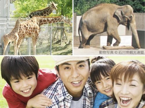 動物園600