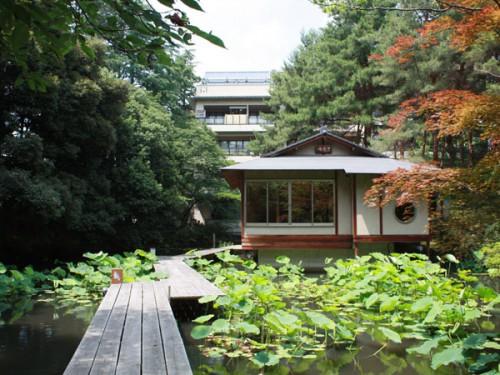 茶室と池IMG_8481
