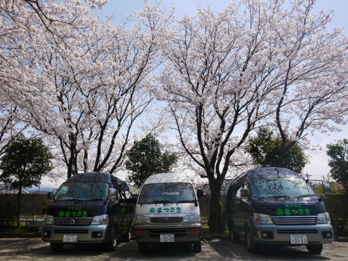 桜車P1160107