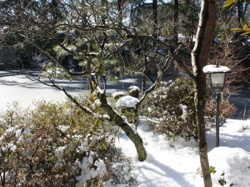 20160126展望雪山IMG_7163