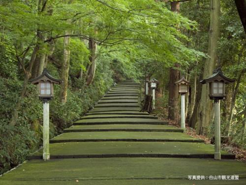 白山比咩神社1白山市観光連盟800