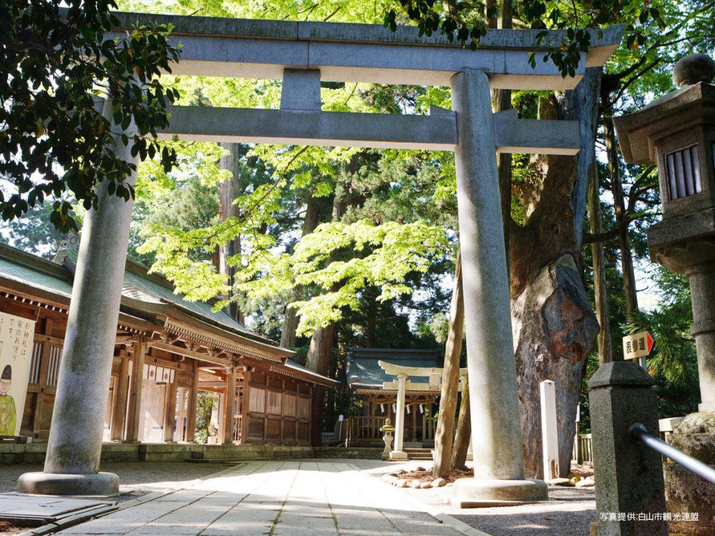 白山比咩神社4白山市観光連盟1200