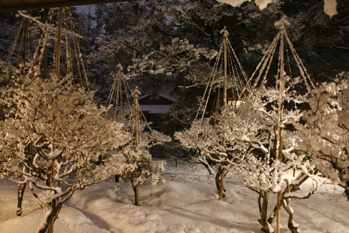 180130雪庭雪吊IMG_7029