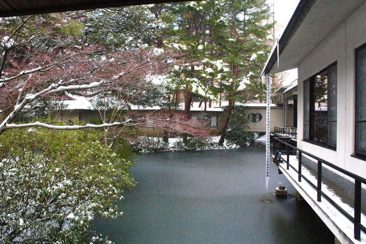 雪見IMG_6667