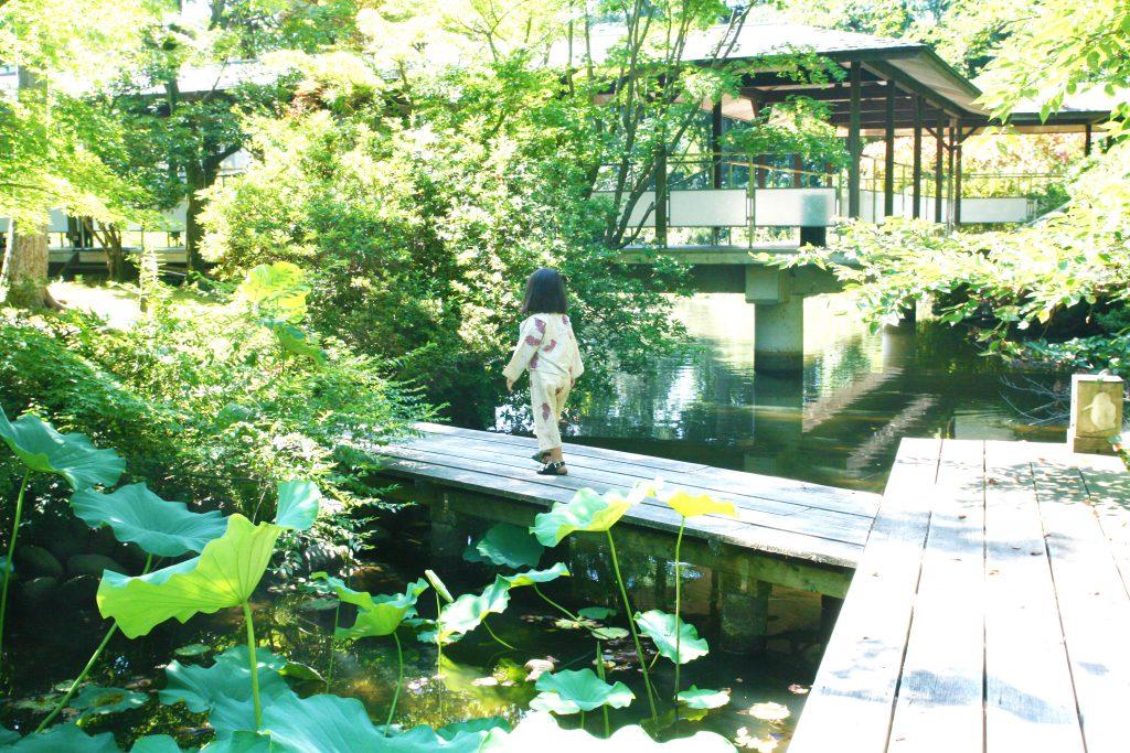 庭園散歩IMG_6751