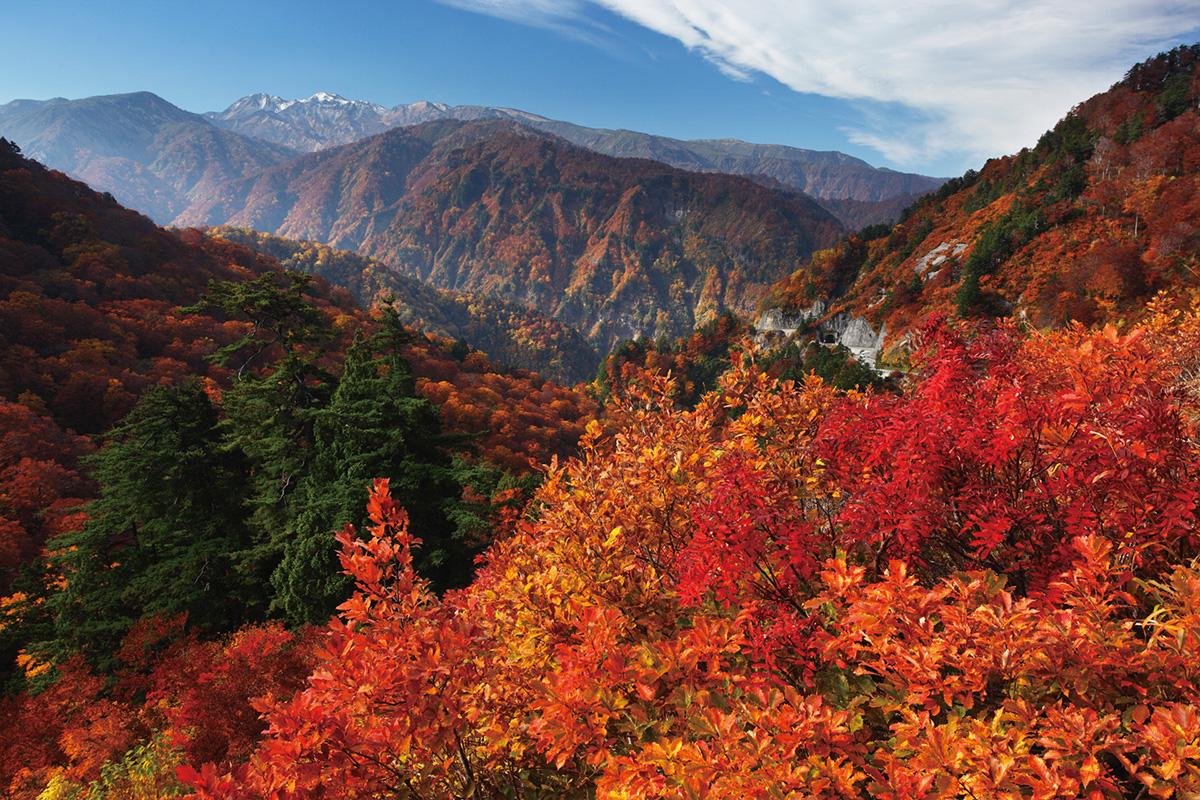 720_1200-800©石川県観光連盟