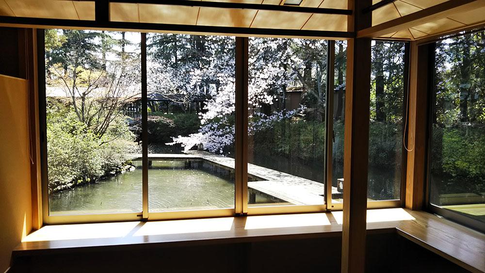 桜茶室DSC_0126